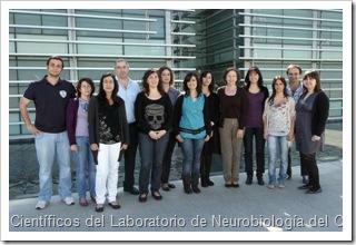 cientificos cipf alteraciones cerebrales por fallo hepatico higado