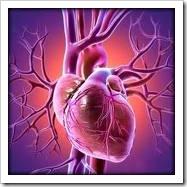 corazon e higado trasplante