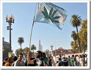 marihuana-porro-thc-hepatitis