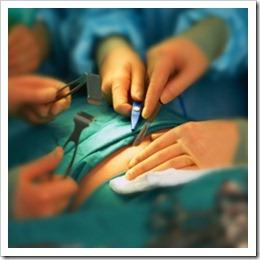higado-trasplante