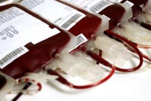 sangre-hierro-higado