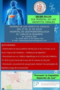 hepatitis udaondo 2015 afiche2