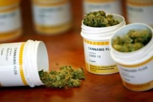 hepatitis-vih-hiv-cannabis-marihuana-maria-porro