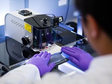 bioquimico analizando muestra de sangre seca