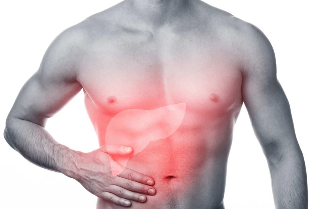 Los esteroides anabólicos pueden provocar una enfermedad del hígado denominada colestasis