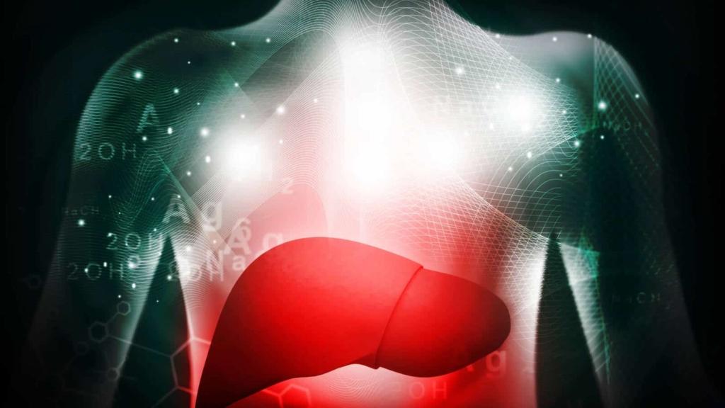 imagen hígado graso 3D