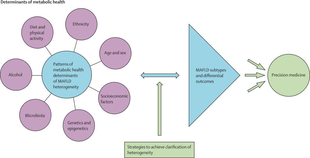 El efecto de adoptar la nomenclatura y definición MAFLD sobre la definición de la heterogeneidad de la enfermedad